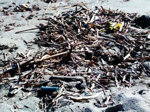 Cartuccia sulla spiaggia a Ceriale: forse spinta dalla mareggiata