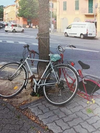Albenga, polizia locale rimuove biciclette abbandonate (FOTO)