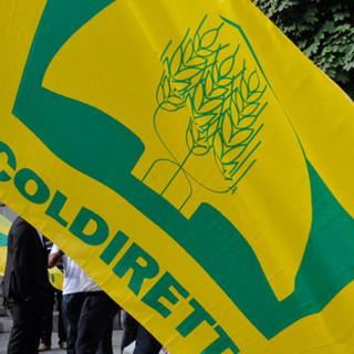 Codiretti, G20: con svolta green, tagliati sprechi a tavola