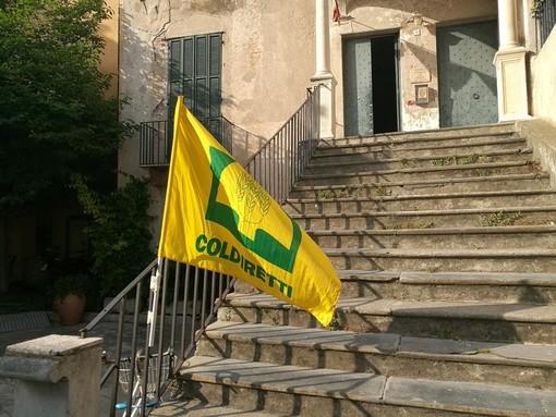 Coldiretti Savona: all'Infiorata di Pietra Ligure va in scena l'agricoltura del territorio