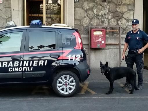 Controlli dei carabinieri della compagnia di Alassio sui bus: due studenti trovati con la droga