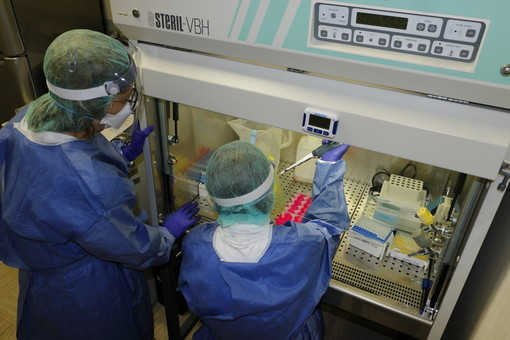 Coronavirus: stabile il numero dei positivi oggi in Liguria