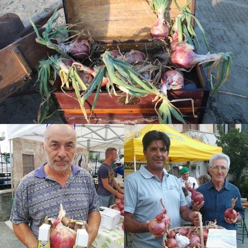La cipolla belendina di Andora è presidio Slow Food
