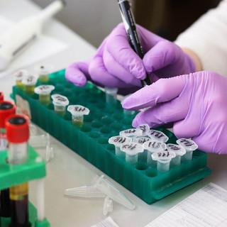 Coronavirus, numeri stabili nel savonese: 16 nuovi positivi e un ricovero in meno