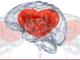 A Loano un convegno ed una giornata di sensibilizzazione sulle malattie cardiovascolari: infarto e ictus