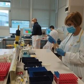Coronavirus, numeri stazionari in Liguria, lieve rialzo dei ricoverati