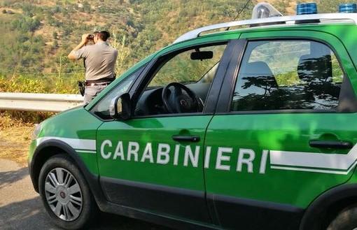 Borgio Verezzi, i carabinieri forestali sequestrano un cantiere per la ristrutturazione di una casa: quattro persone denunciate