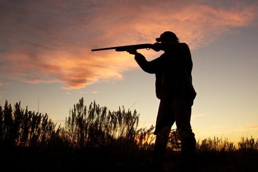 """Ferrando: """"Presentato nuovo calendario venatorio. Grazie ai miei emendamenti rafforzate le ragioni per due giornate aggiuntive di caccia"""""""
