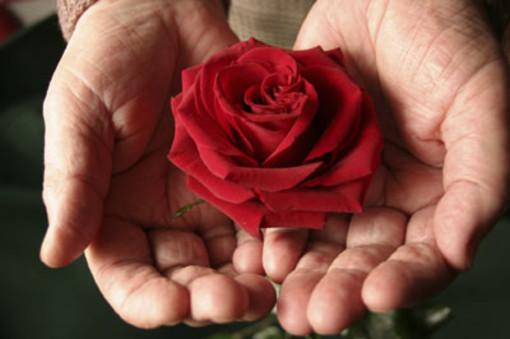 """""""Noi doniamo sangue, c'è bisogno anche di te"""": la nuova campagna di sensibilizzazione della Regione"""