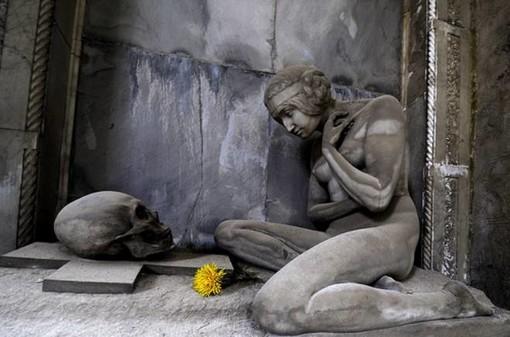 Savona: Storie di una ecatombe, raccolte da Alma Carlevarino