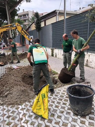 Albenga, terminati i lavori di messa in sicurezza di via Einaudi