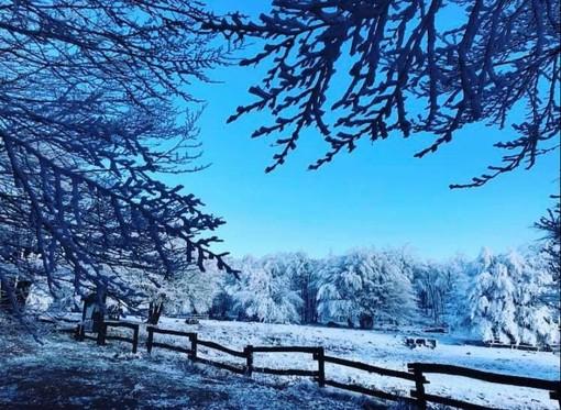 Arriva la neve sull'Appennino ligure anche a bassa quota (FOTO)