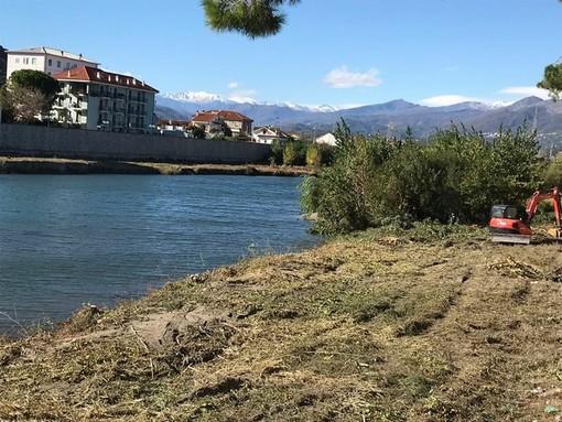 Tronchi nel fiume Centa incastrati sotto i ponti: il sindaco di Albenga emana ordinanza nei confronti di Anas