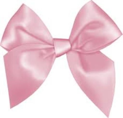 Alassio in Rosa per Alessia: raccolti quasi 4mila euro per la lotta contro il tumore al seno