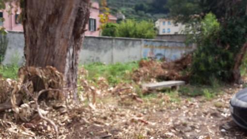 """Finale Ligure: fuori dal Borgo verde """"selvaggio"""" e abbandono indisciplinato di rifiuti"""