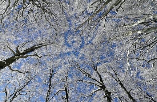 Dopo il vento ritorna il gelo, meteo più mite al mare