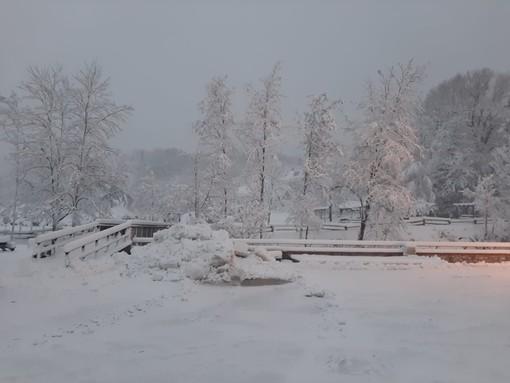 Neve a Giusvalla: blackout elettrico e alberi spezzati. A Calizzano superati i 30 cm