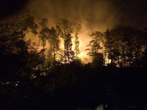 Antincendio boschivo, via alla campagna estiva di prevenzione: nuovo servizio elicotteri e fondi a comuni e volontari