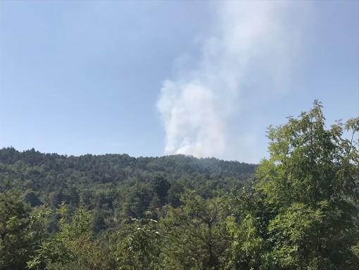 Incendio boschivo tra Spotorno e Noli