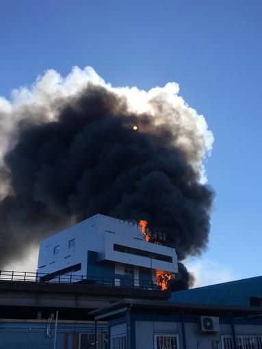 """Incendio all'Autorità Portuale, il comandante della Guardia Costiera Gasparini: """"Risposta immediata del dispositivo"""""""