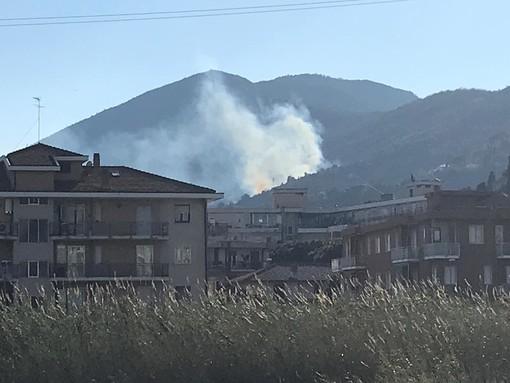 Sotto controllo l'incendio boschivo divampato tra Albenga e Alassio (FOTO)