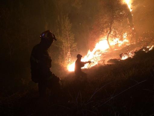 Incendi boschivi, da oggi mercoledì 20 marzo scatta lo stato di grave pericolosità