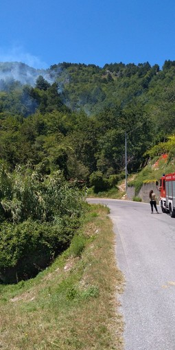 Balestrino, in fiamme il bosco in località Cuneo: Vigili del fuoco e volontari dell'Antincendio Boschivo in azione