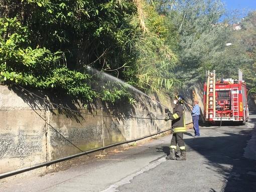 Celle Ligure: incendio sterpaglie in via Ravezza (FOTO e VIDEO)