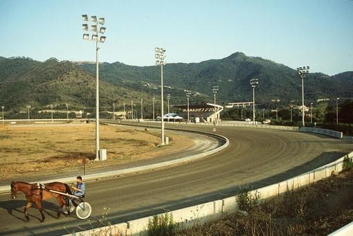 Gare truccate nell'ippodromo di Villanova: torna in libertà il driver Massimiliano Regge