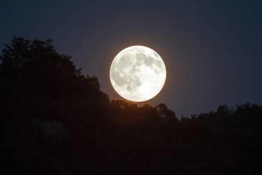 """""""Mamma mia"""": il 30 luglio 1971 le uniche parole italiane sulla luna"""