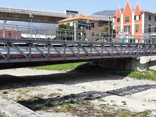 Vado, lavori di ripristino dell'argine del Segno nei pressi dei ponti di via Fontanella e via Bertola: ordinanza del sindaco