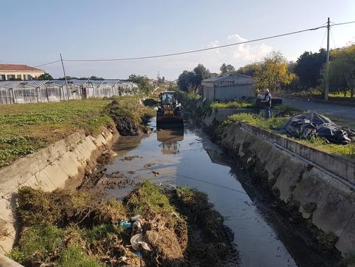 Albenga, al via l'intervento di pulizia del Rio Antognano (FOTO)