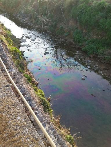 Altri sversamenti nel Rio Carenda ad Albenga
