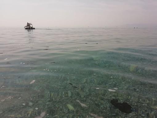 """""""Macchie nere"""" in mare a Varigotti: indagini in corso"""