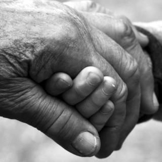 """Emergenza Coronavirus, presidente Toti: """"Videochiamiamo i nonni, la tecnologia riunisce le famiglie"""""""