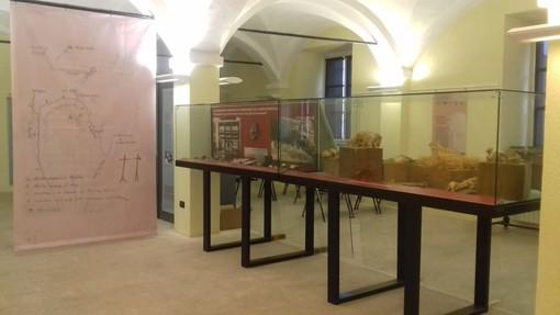 """Il """"Centenario Bicknelliano"""" approda al Museo Archeologico del Finale"""