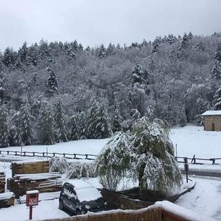 """La dama bianca ricopre le alture della Val Bormida, Olivieri: """"Un detto dei nostri vecchi dice 'tanta neve tanti funghi'"""" (FOTO)"""