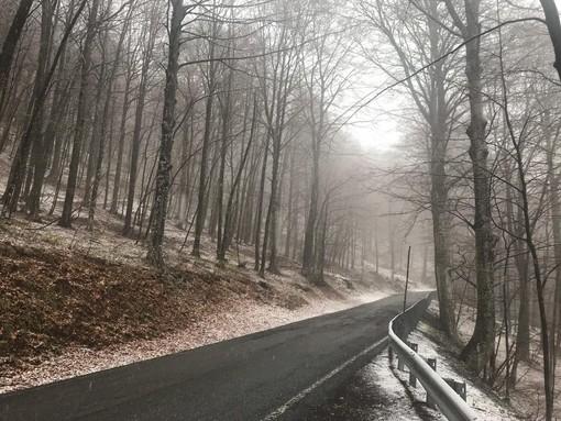 Lieve maltempo, una spolverata di neve sul Melogno