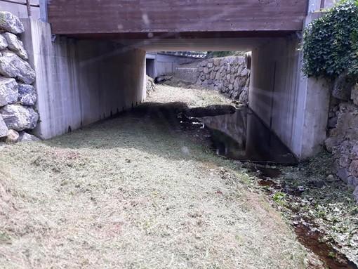 """Carcare pulisce gli affluenti del fiume Bormida, il sindaco De Vecchi: """"Lavori per mitigare il rischio alluvionale"""" (FOTO)"""