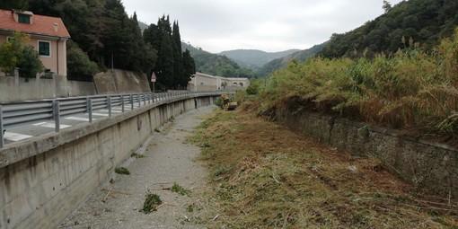 Albisola, iniziati i lavori di pulizia dell'alveo del rio Basco