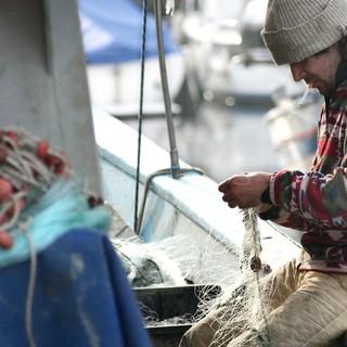 """Pesca, Coldiretti: """"Bene nuovi fondi da Bruxelles ma evitare complicazioni burocratiche"""""""
