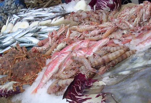 """Cresce il consumo di pesce straniero, Coldiretti: """"Serve la data di pesca per garantire la massima tracciabilità"""""""