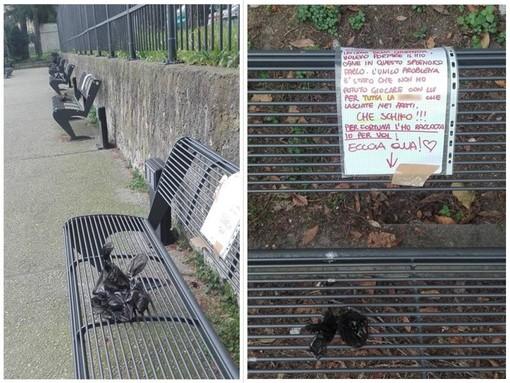 Savona, singolare protesta anti-deiezioni: raccoglie escrementi di cani e li dissemina sulle panchine (FOTO)