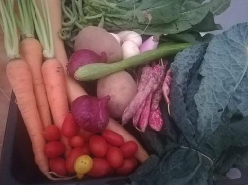 """""""Campagna sana, dieta amica"""": la proposta di Coldiretti Liguria per la Settimana mondiale dell'alimentazione"""