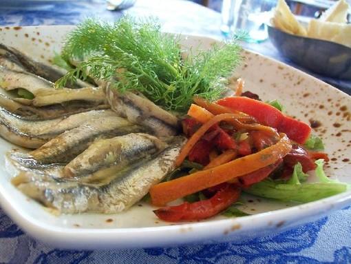Albenga: buon pesce, progetto di collaborazione tra Palazzo Oddo e Slow Food