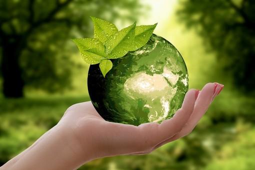 """""""Earth Hour"""" del WWF. I Verdi savonesi concordano per programmi futuri superata la crisi sanitaria"""
