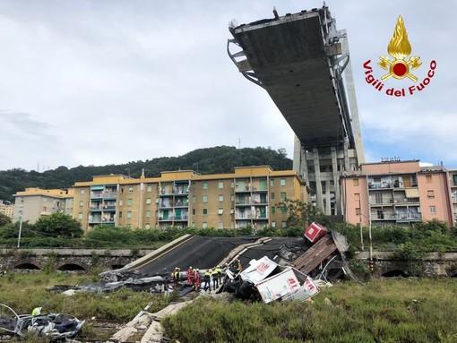 I cani coraggiosi dei soccorritori in prima linea a Genova (VIDEO)