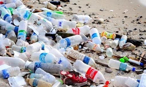 """Borghetto Santo Spirito: """"The Save Movement"""" ripulisce una spiaggia libera cittadina"""