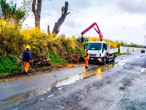Albenga, la Protezione civile attiva sul territorio per la pulizia di rii e canali