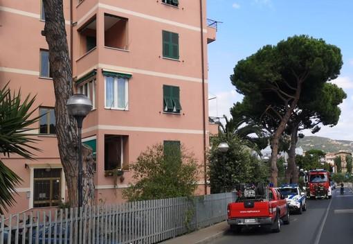 Rami pericolanti: intervento dei Vigili del fuoco a Pietra Ligure
